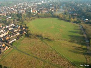 meadow1