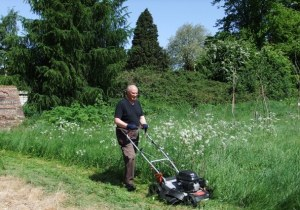 mowing the orchard